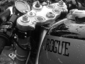 Rogue 2a