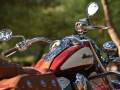 Indian-chief-vintageh-011