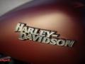 Harley-streetbob-2018-011