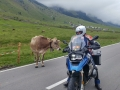 Easy-Rider-Alps-042