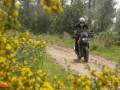KTM-390-Adventure-027