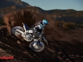 YZ250F Monster Energy Edition action