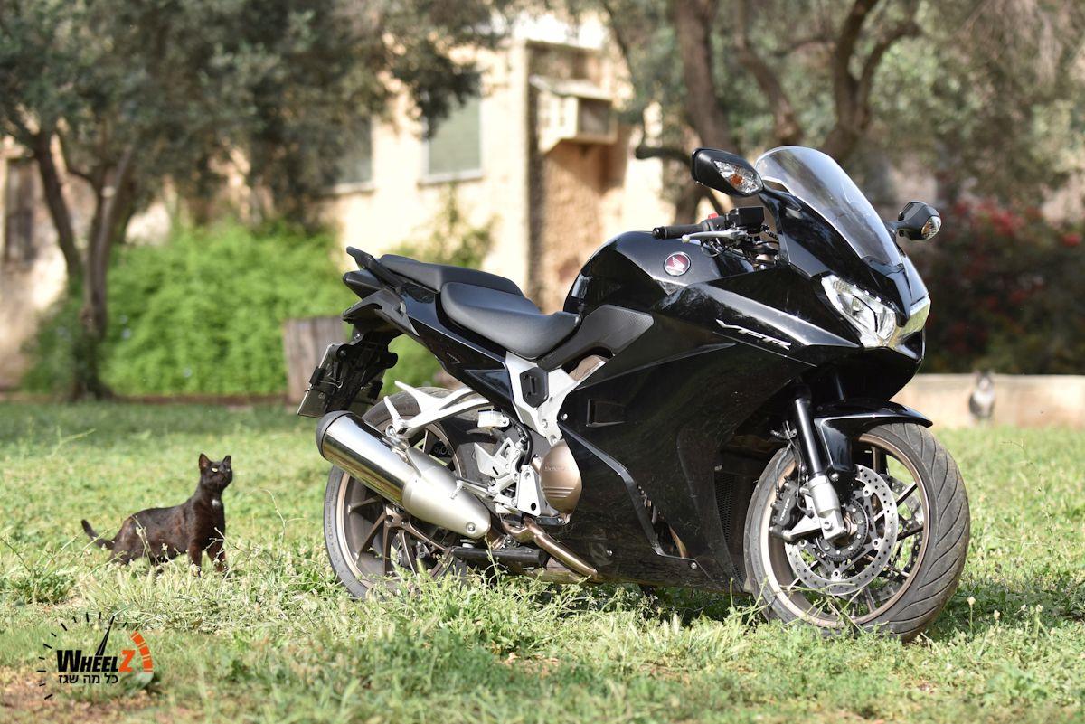 הונדה VFR800F וחתול