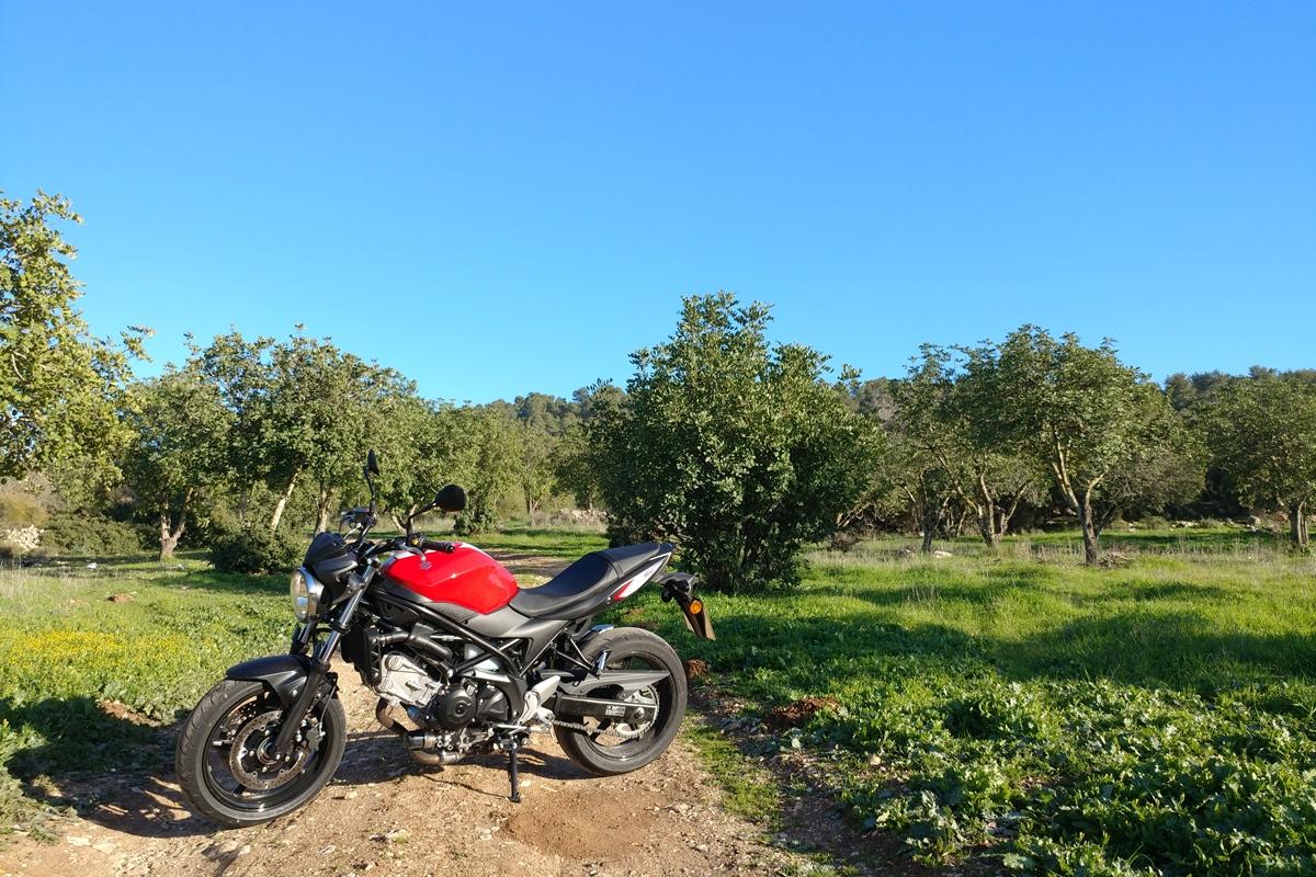שמיים כחולים, עשב ירוק, אדמה חומה ואופנוע אדום - שילוב מושלם!