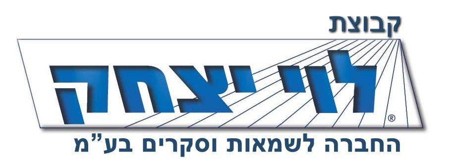 logo_Levi_Group
