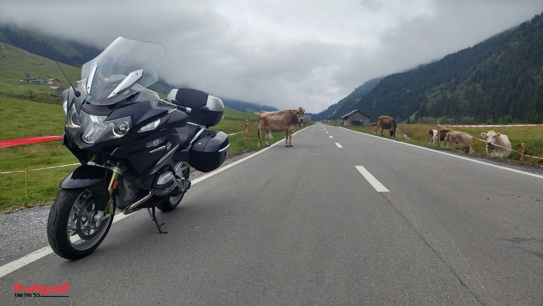 זהירות מהמזכרות על הדרך!