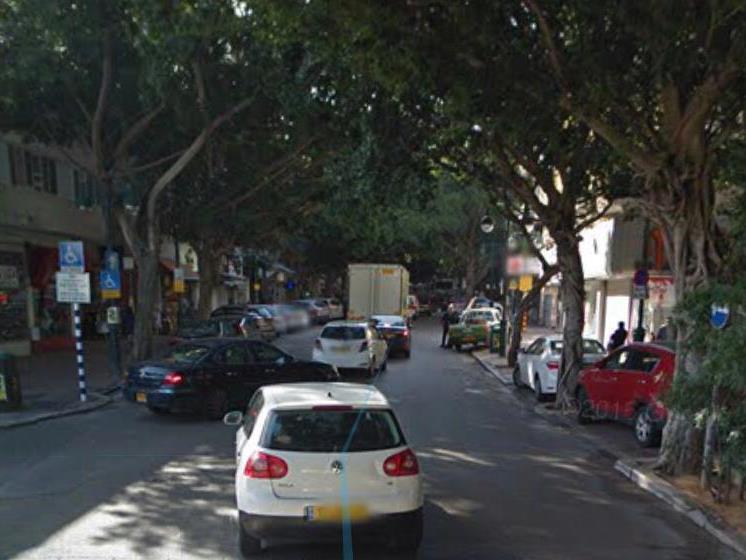 עצי הפיקוס ברחוב ביאליק ברמת גן (צילום: גוגל)