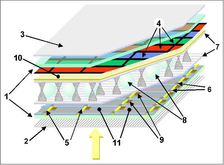 מסכי LCD ו-TFT בחלוקה למרכיבים: 1) משטחי זכוכית. 2 ו-3) מקטבים. 4) מסכת צבעים. 5 ו-6) קווי הפעלה. 7) שכבת חיזוק. 8) שומרי מרווח. 9) טרנזיסטורי TFT (דקי סרט). 10) אלקטרודה קדמית. 11) אלקטרודה אחורית (מתוך ויקיפדיה)