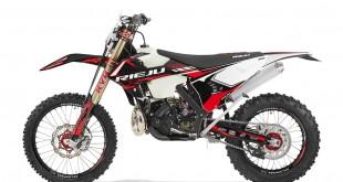 Rieju-pro-300-01