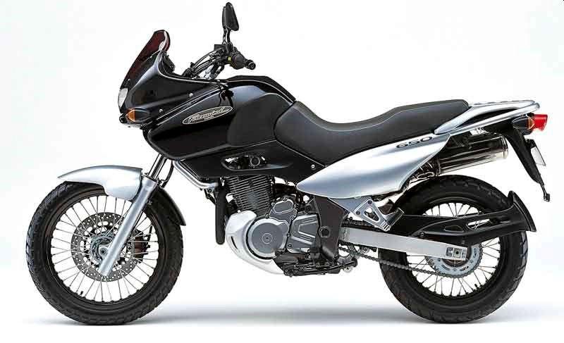 סוזוקי XF650 פריווינד